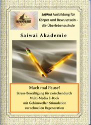Cover: Pause-machen
