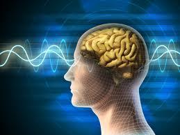 Brain-Sound